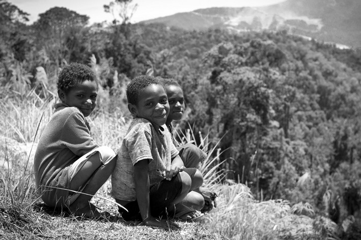 rainforest papua new guinea