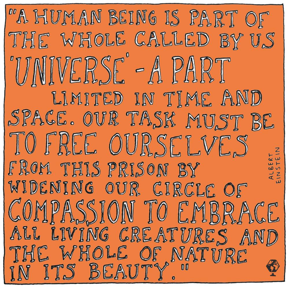 Einstein illustrated, quote