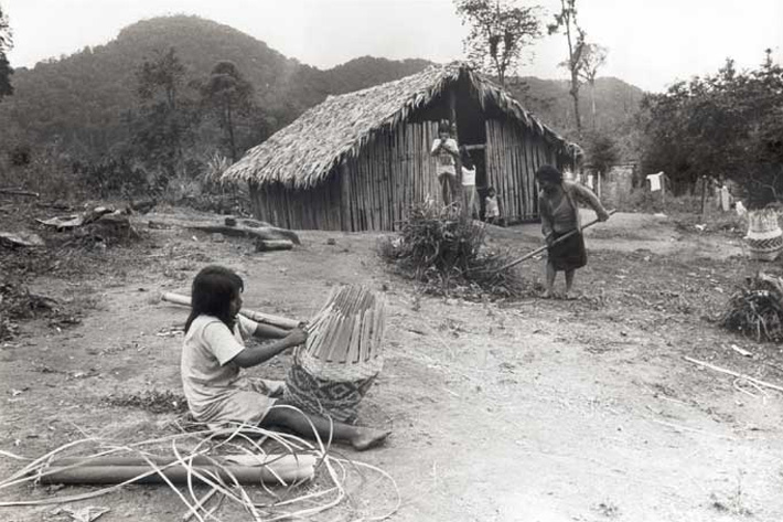 guaraní paraguay unusual homes