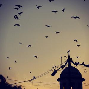 old delhi, namita azad, maptia