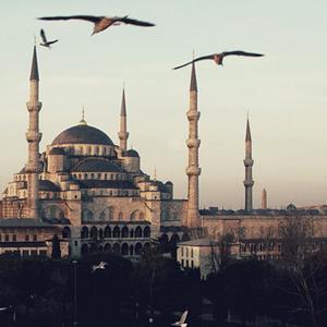 istanbul, maptia, diane caldwell