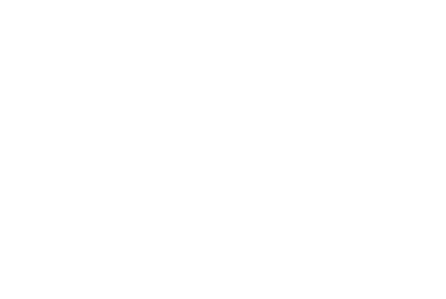 ROOK /  PARTNERS IN BRAND