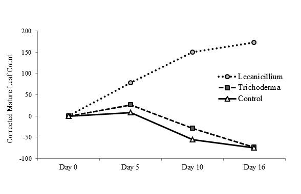 graph3.jpg