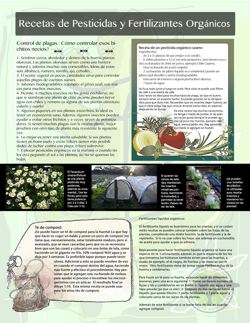 pagina7.jpg