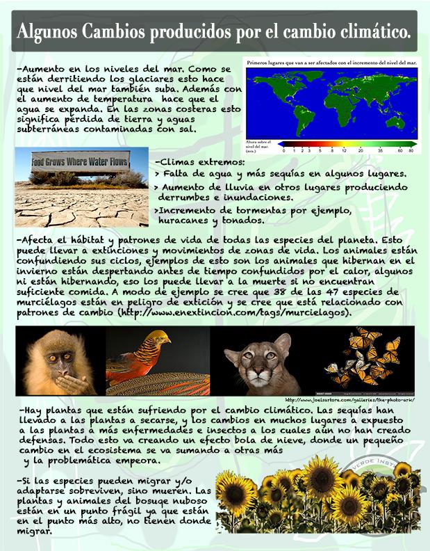 pagina3.jpg