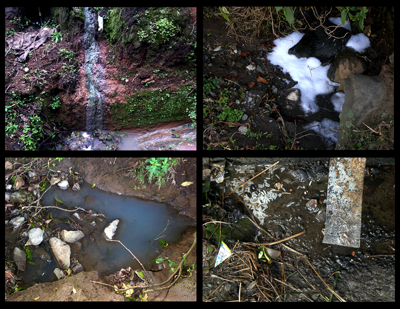 Fotografías tomadas en Monteverde de ejemplos de Aguas Grises - Greywater examples from Monteverde