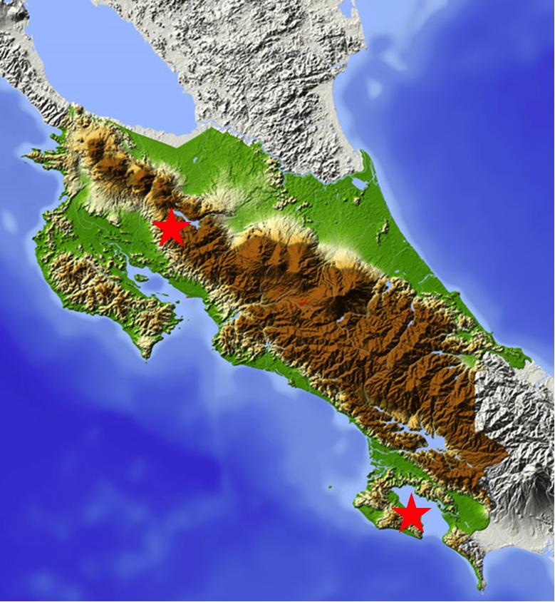 Lugares donde he examinado y recogido a Billia en Costa Rica. Estrella superior - Monteverde. Estrella inferior, Puerta Jiménez, Osa.