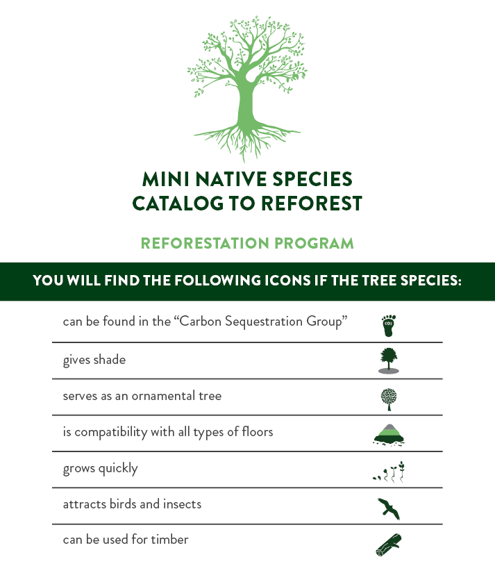 Booklet Reforestation Program ENG.png