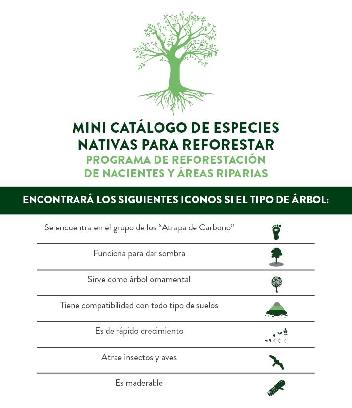 Libro de Reforestación.png