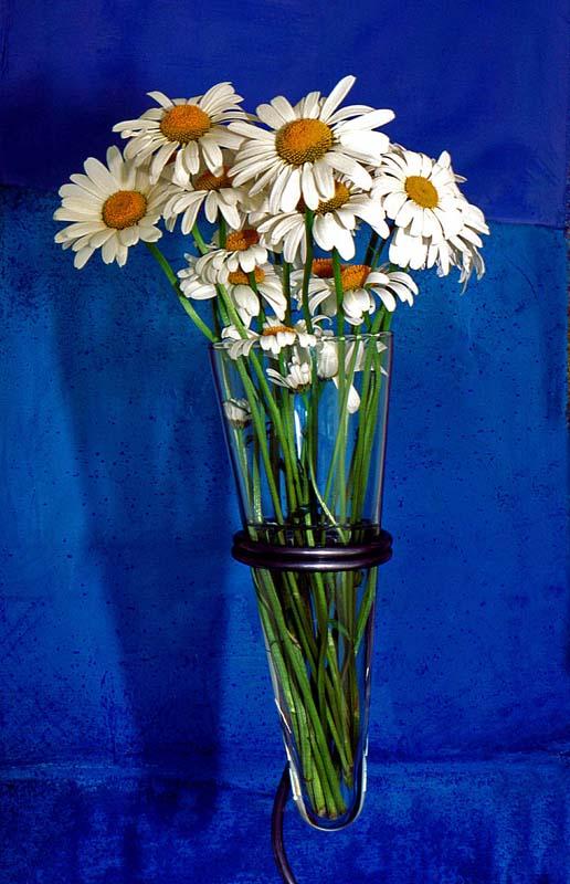 Daisies in Vase'