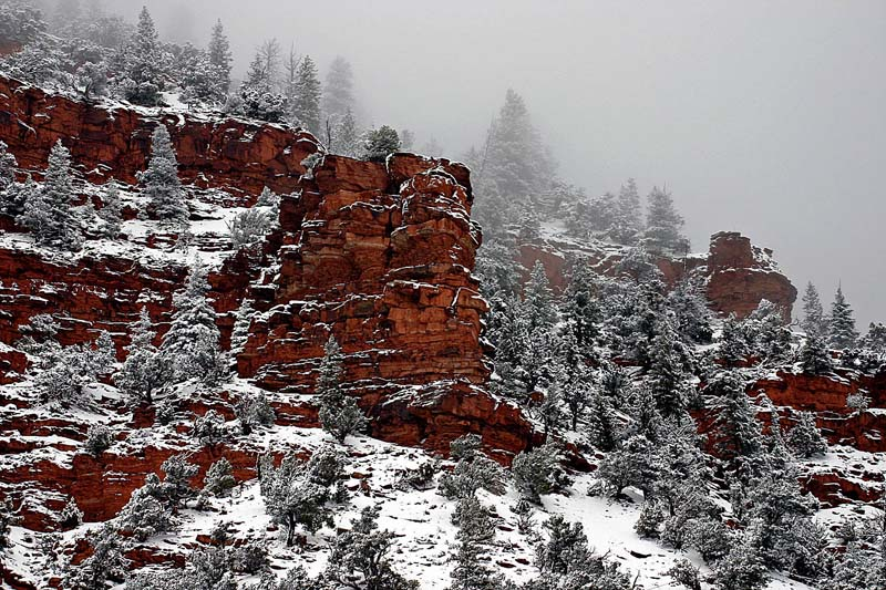 Red Rock Winter 1