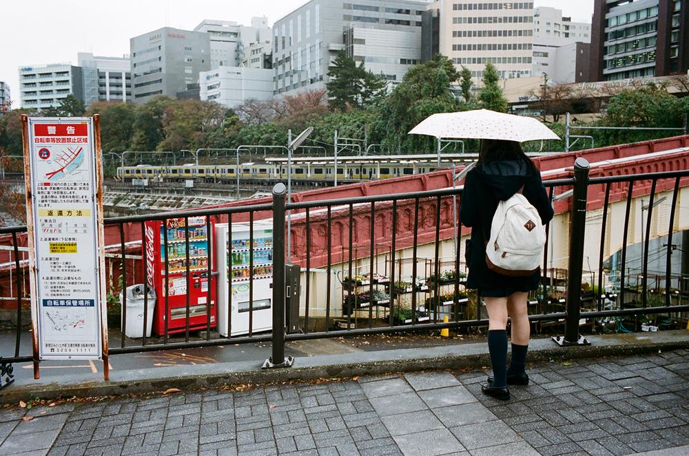 Japan_Nov_2015_06460025.jpg
