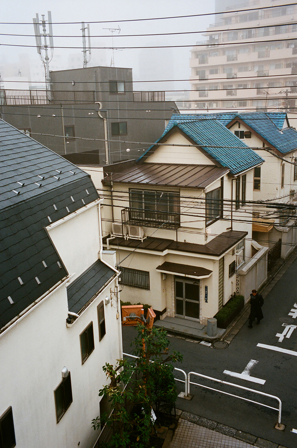 Japan_Nov_2015_06770025.jpg