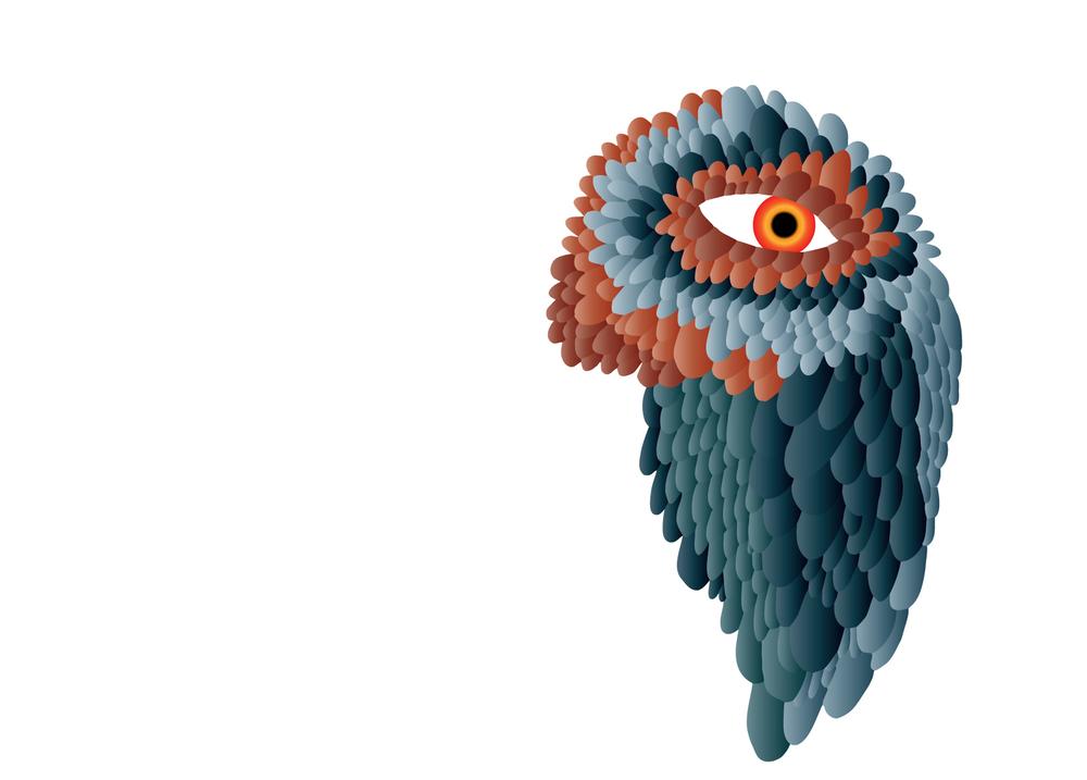parrotguy.jpg