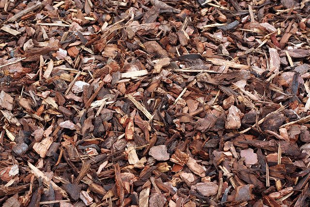 Image Result For Types Of Shredded Bark Mulch