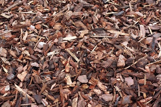 photo credit:www.crinklecrankle.com/