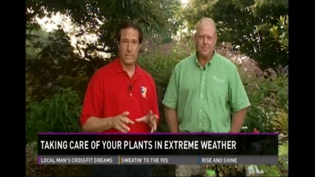 New Garden on WFMY, July 18 2013. Click image for video.