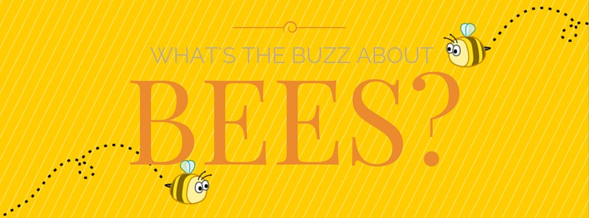 What's the Buzz About Bees?