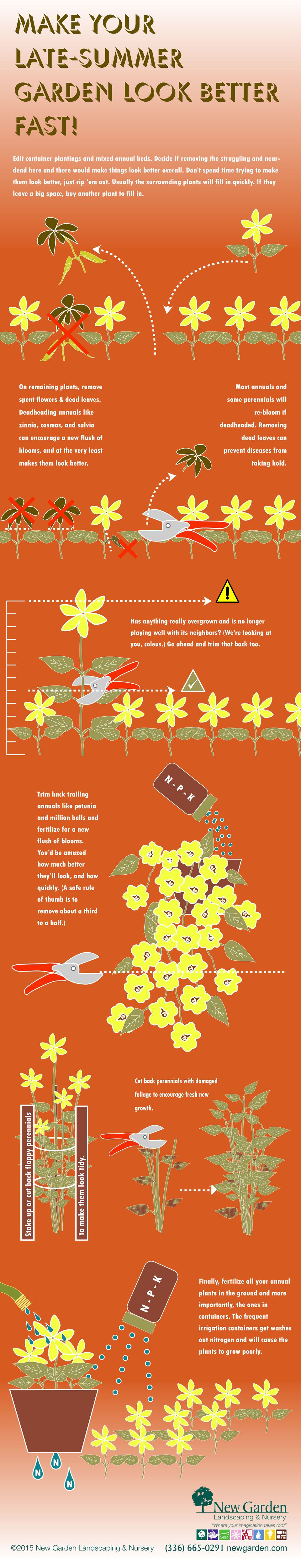 Make Your Late Summer Garden Look Better Fast!