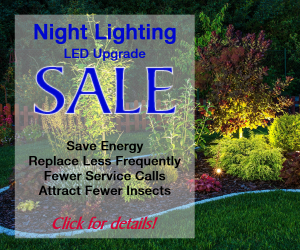 LED Night Lighting Special