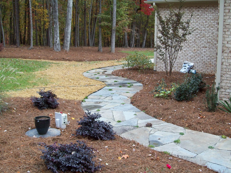 Applied properly, pine needle mulch gives a tidy, finished look.