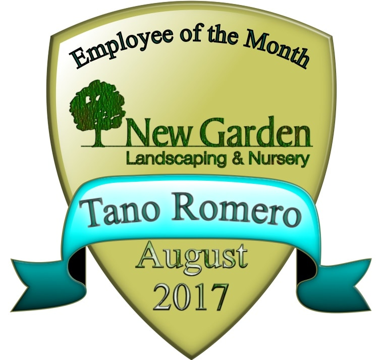 Tano Badge-min.jpg