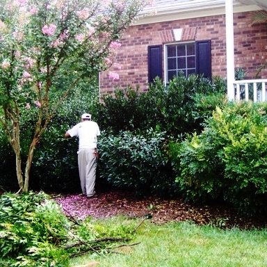 Enhancement Services - If your outdoor spaces are rundown or overgrown, need a