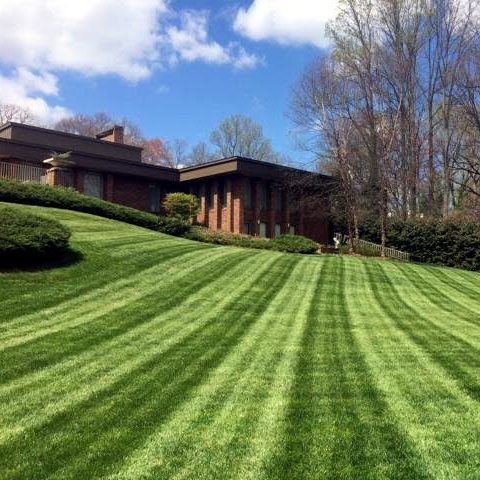 Landscape Maintenance -