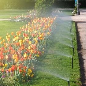 Spring Irrigation Startups -