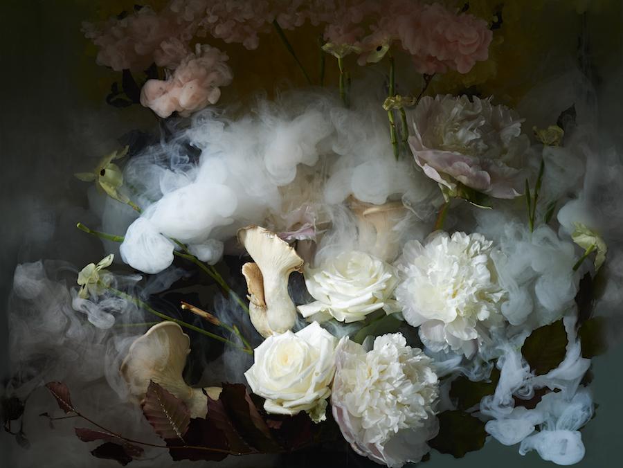 Botanical Abyss