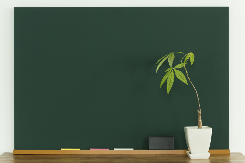 chalkboard and plant.jpg
