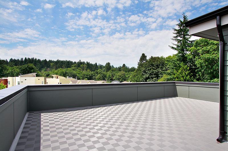 3230 rof top deck.jpg