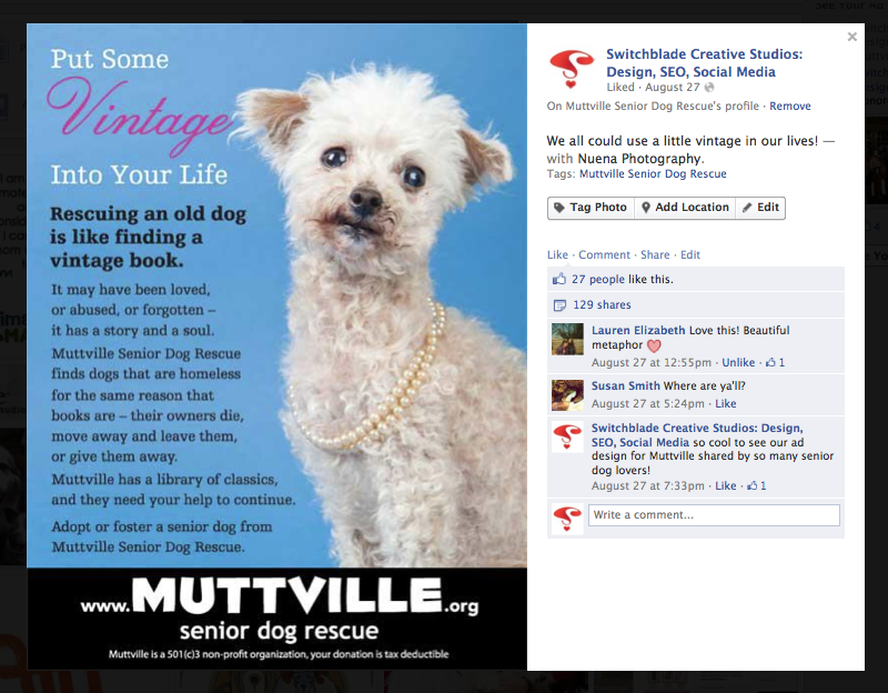 Muttville Senior Dog Rescue Vintage Ad Animal Rescue Marketing