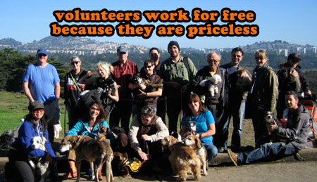 volunteers-are-priceless.jpg