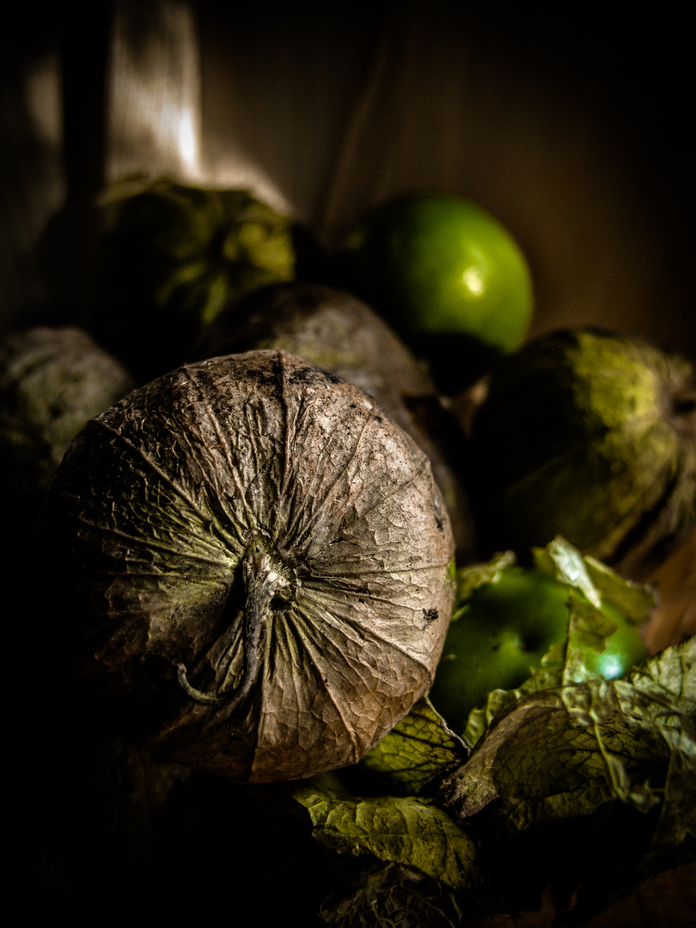 tomatillo_corn_husks.jpg