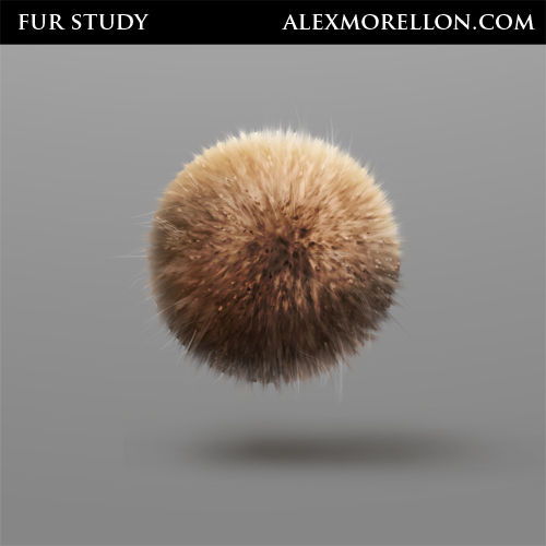 Fur Study using the great  Nate Hallinan tutorial.