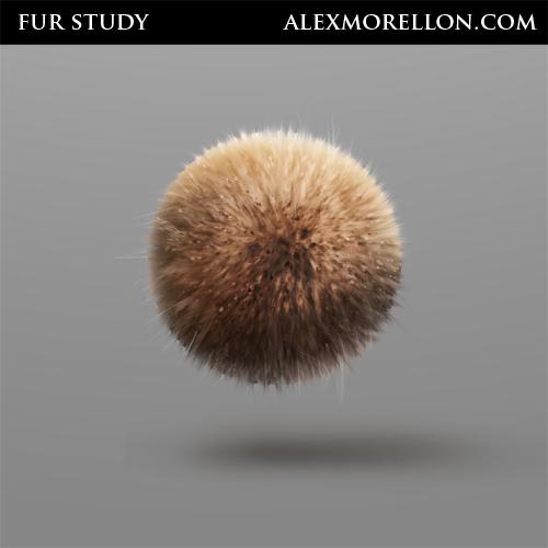Etude sur la fourrure inspiré par le tutorial du talentueux    Nate Hallinan tutorial .