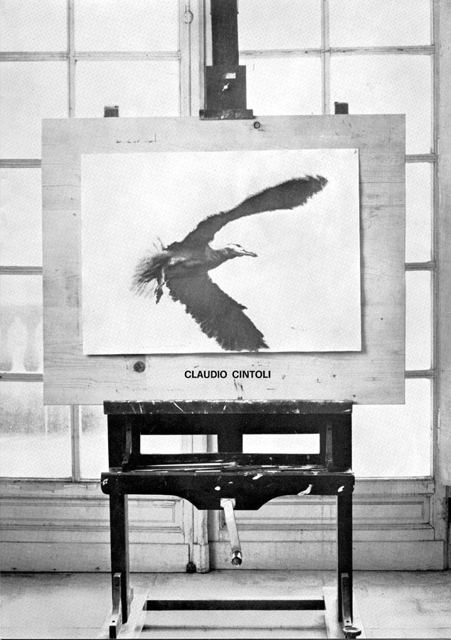 106 - Nido e altri voli - Claudio Cintoli - cat 106 Ed Galleria d efoscherari 1977.jpg