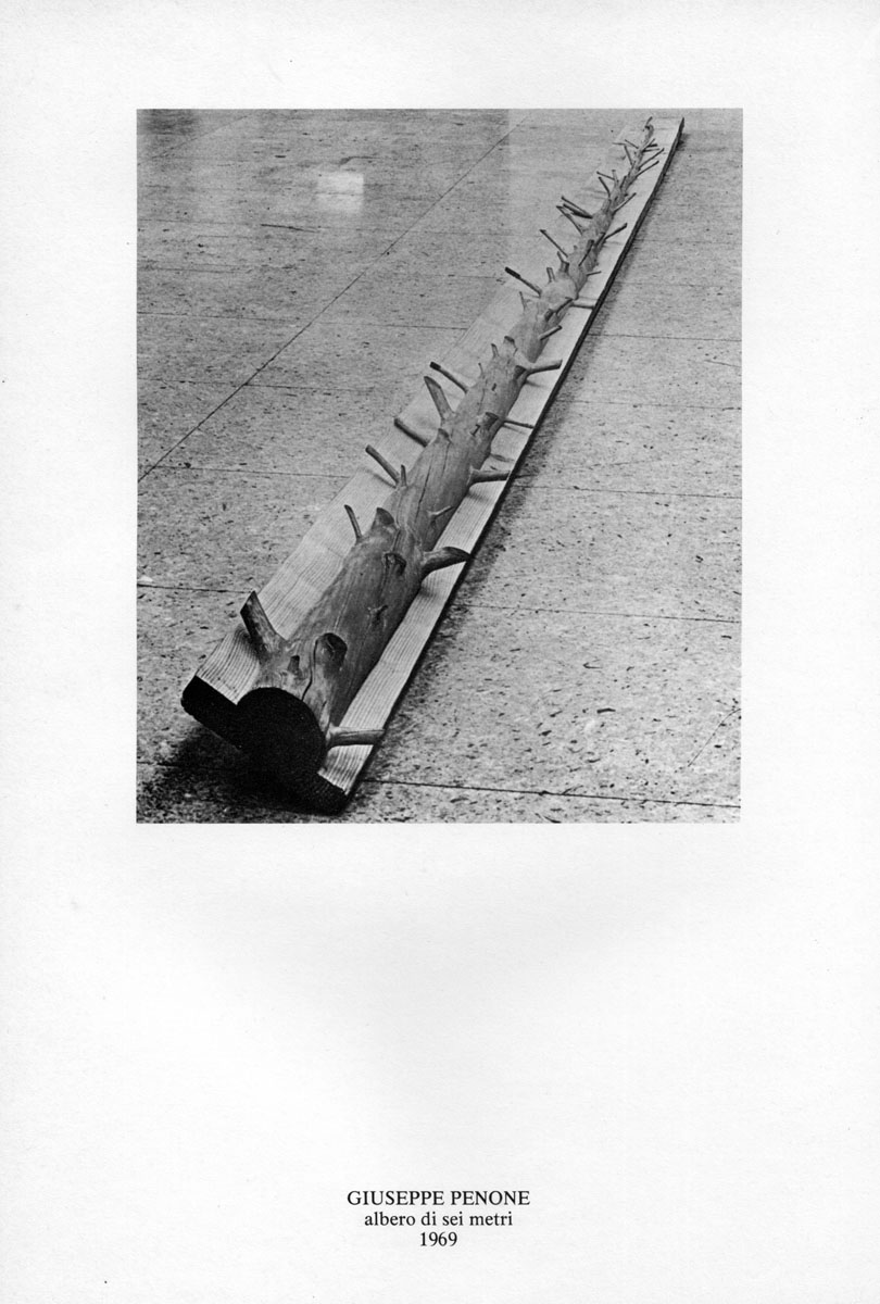 Le figure del tempo Galleria de foscherari Penone.jpg