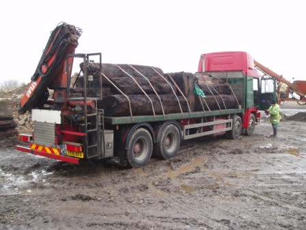 Bog Oak on lorry 2010.jpg