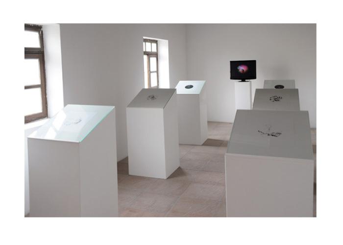 scriptorium_install-1.jpg