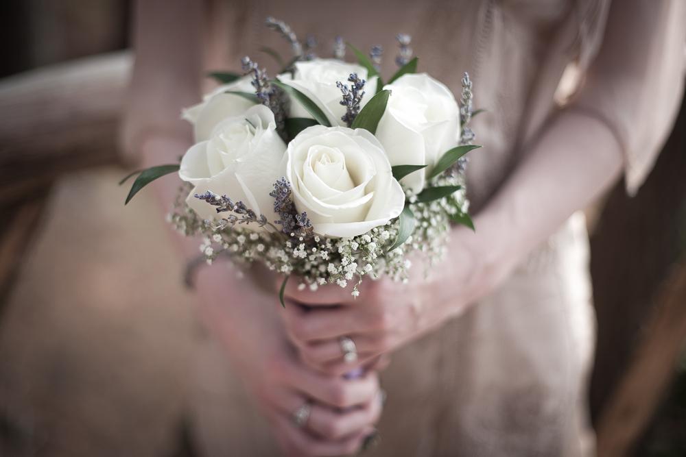 providence wedding photographer