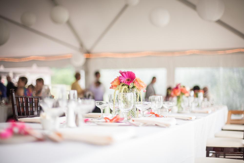 plimoth plantation wedding photographer