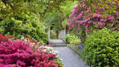 Twengwainton Garden