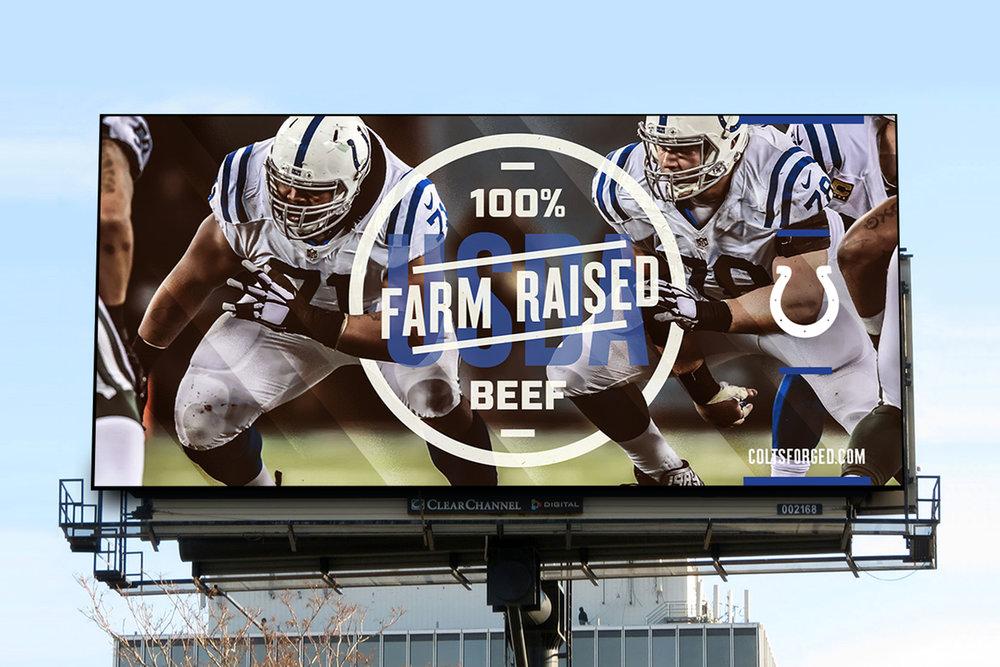 Colts_9.jpg