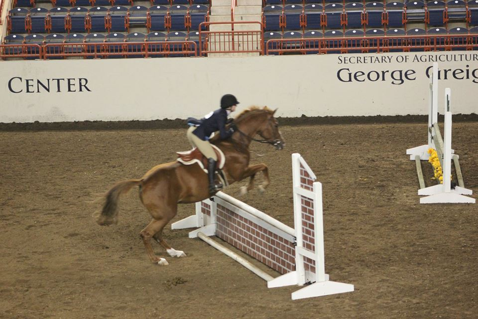 Emily and Sadie 2'3 Open Eq