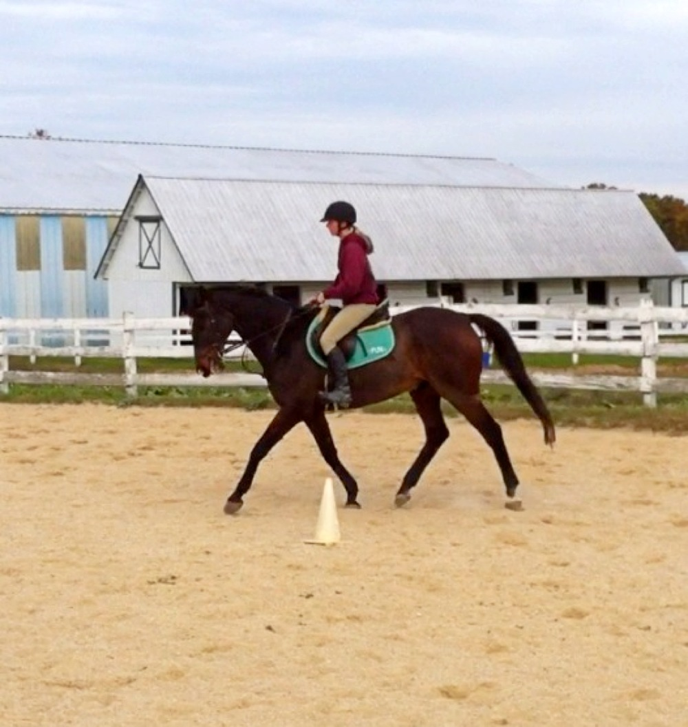 Fun and I doing some dressage a few weeks ago.