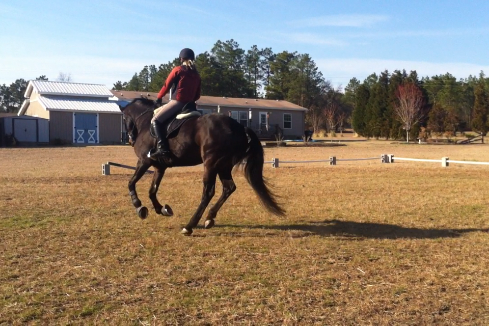 Dressage lesson #4, working on the cantering spiral exercise.