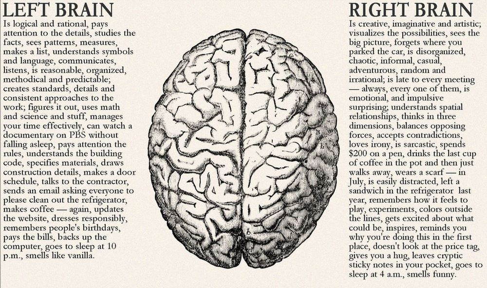 Left brain vs Right brain of a designer.