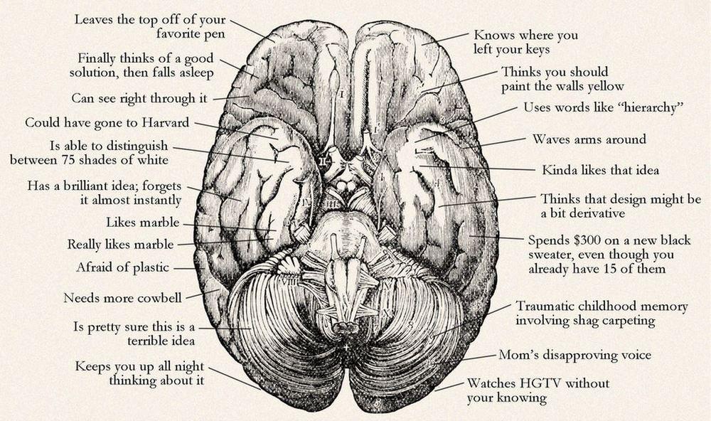 Designer Brain.